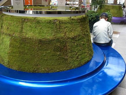 緑化ベンチ